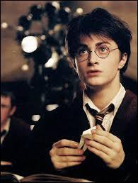 12 petits secrets sur l'univers de Harry Potter (1)