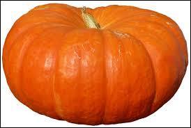 Quelle est cette variété de courge un peu aplatie dont la couleur va d'un orange rougeâtre au vert foncé ?
