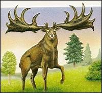 Quel est cet animal aux immenses bois majestueux ?