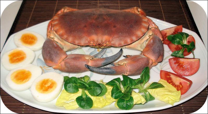 Puis voici un magnifique crustacé :