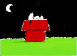 Comment s'appelle le héros de bande dessinée qui aime dormir sur le toit de sa niche ?