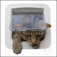 Qui a inventé la chatière ?