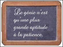 """De qui est la phrase : """"Le génie n'est qu'une plus grande aptitude à la patience"""" ?"""