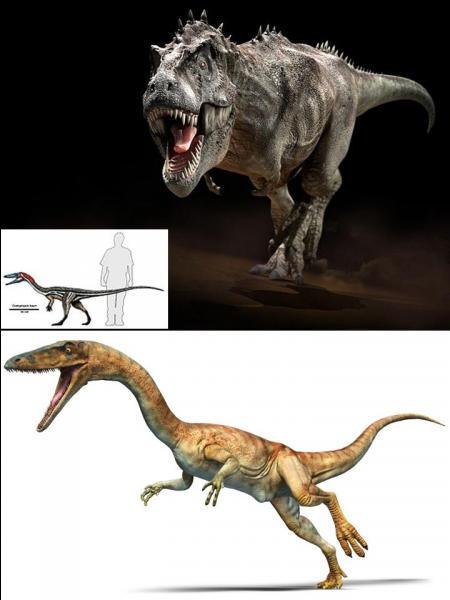 Il y a 230 millions d'années, une nouvelle forme d'animaux apparaît. Pour l'instant, ils ne sont pas très grands. Ils tiendront le haut de l'affiche « que » pendant 165 millions d'années.Qui sont-ils ?