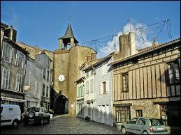 Cette nouvelle balade débute à Parthenay. Vous pourrez découvrir dans cette ville médiévale sa citadelle ou son pont fortifié Saint-Jacques. Vous pourrez également vous détendre au Festival des Jeux. Considérée comme la capitale de la Gâtine Poitevine, elle se situe dans le département ...