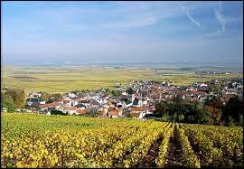 Je vous emmène en Champagne-Ardenne, dans l'arrondissement d'Épernay. Nous partons à la découverte d'Avize, village viticole au pied de la Côte des Blancs. Nous serons ainsi dans le département ...