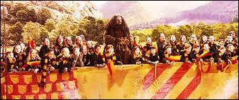 Le jour de la finale, les trois quarts de la foule encourageaient avec grande joie l'équipe de Gryffondor. Quant à ceux qui supportaient les Serpentard, ils étaient...