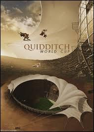 Quand aura lieu la finale de Quidditch ?