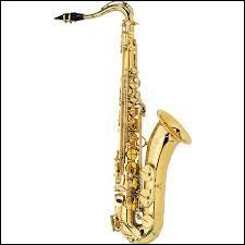 Quel est le nom de cet instrument ?