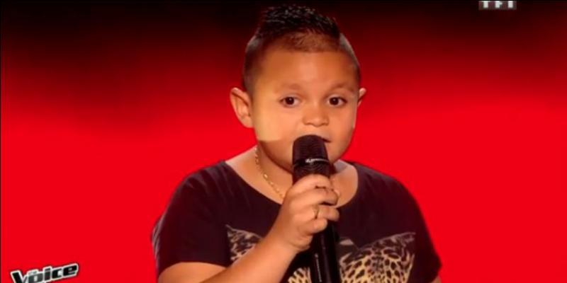 En quelle langue, Swany a-t-il chanté sa chanson ?