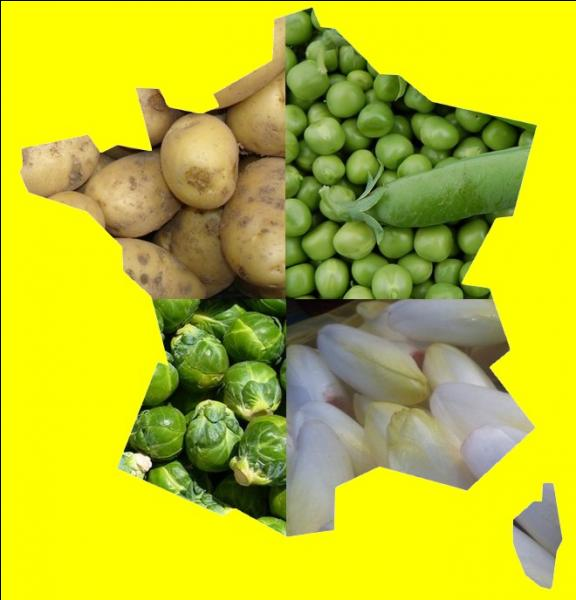 Quelle région est le premier producteur français de petits pois, de choux de Bruxelles, d'endives et de pommes de terre ?