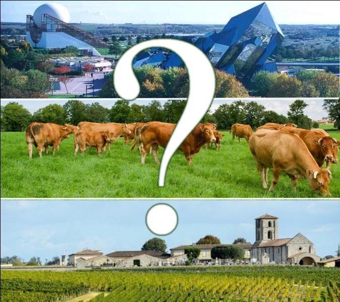 Avec ses 84000 km², cette région deviendra la plus grande du territoire français...