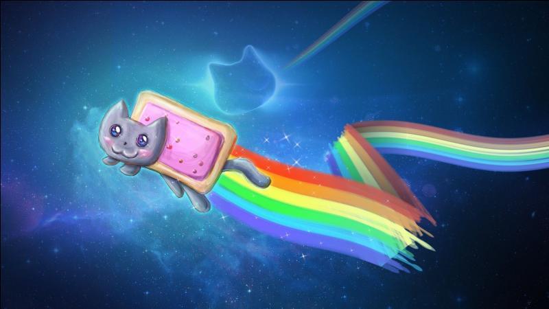 Comment se nomme le 'mème' d'un chat ayant pour corps une tartine de confiture, des joues roses et un arc-en-ciel qui lui sort de l'arrière-train le tout dans l'espace en arrière-plan sur une musique remixée ?