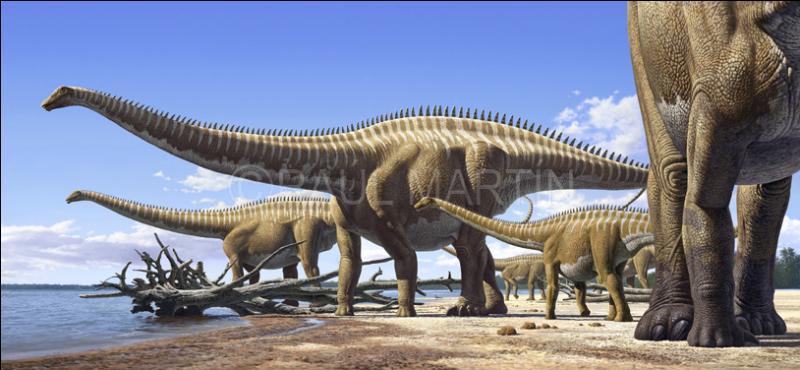 """Que signifie """"diplodocus"""" ?"""