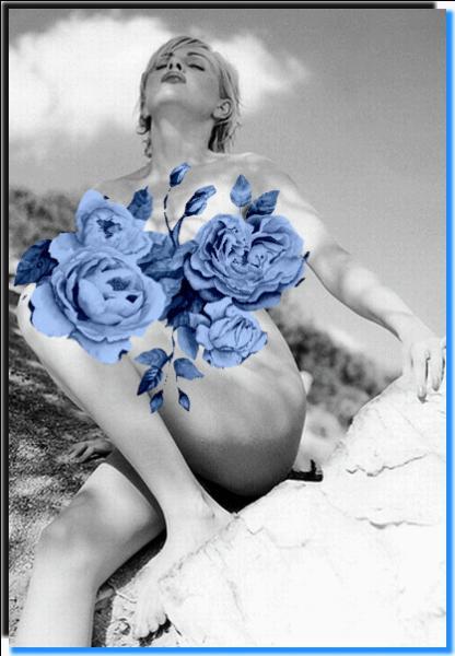 """Qui a écrit """"A l'ombre des jeunes filles en fleur"""" ?"""