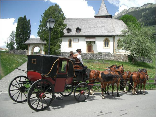 Voitures des familles royales et nobles des XVIIIe et XIXe siècles, véhicules de prestige jusqu'à la Seconde Guerre mondiale, ... étaient attelés à deux ou quatre chevaux.