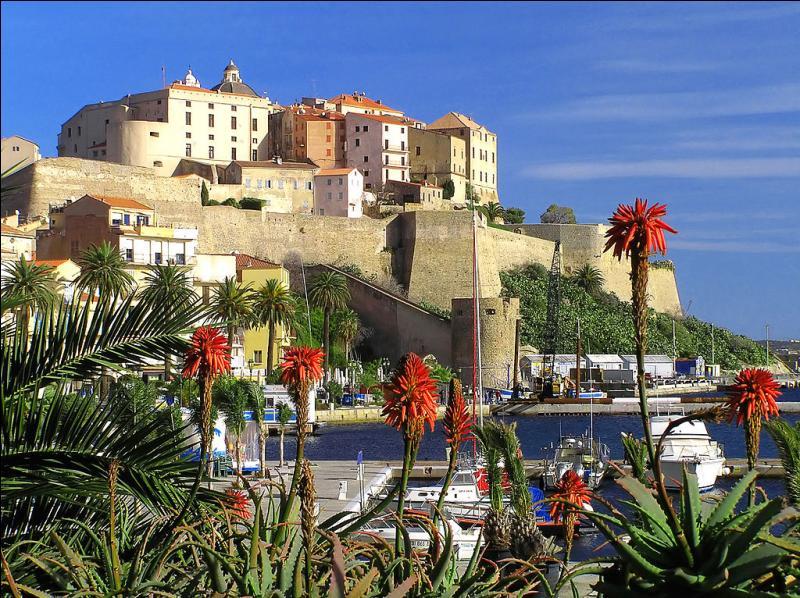 """L'été, """"La Pinède"""", célèbre plage de la capitale de la Balagne, est desservie par le trinighellu, le petit train des plages. Dans quelle ville de Haute-Corse irez-vous l'été prochain pour bronzer ?"""