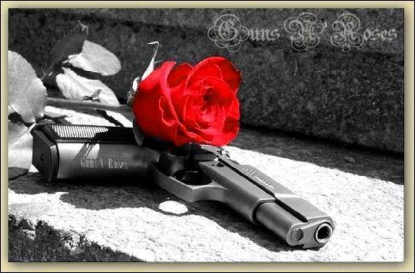 Dans la guerre des Deux-Roses, de quelle maison la rose rouge était-elle l'emblème ?