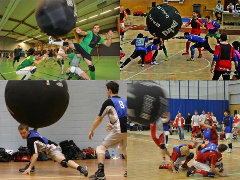 Voici un sport un peu particulier puisqu'il oppose 3 équipes de 4 joueurs. Le but est d'empêcher la balle de toucher le sol. Pour cela, il faut être rapide et savoir frapper une balle de 1, 22 m et pèse 1 kg environ.Quel est ce sport ?