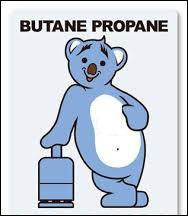 Citez-moi le nom de cette société française, spécialisée dans la commercialisation de gaz en bouteille, représentée par ce sympathique ours bleu :