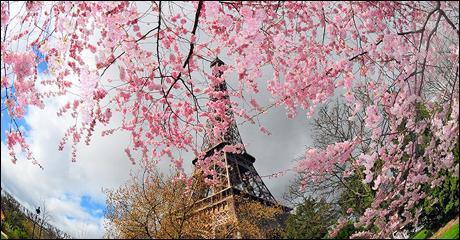 """De qui sont les paroles """"Montmartre, en ce temps là accrochait ses lilas jusque sous nos fenêtres"""" ?"""