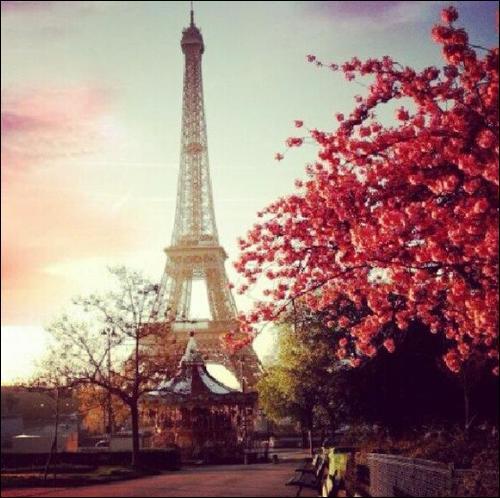 """C'est Patrick Bruel qui remit ces paroles au goût du jour """" Paris je t'aime, je t'aime, je t'aime, avec ivresse, comme une maîtresse"""" Mais qui les chantait dans les années 50 ?"""