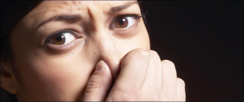 1 français sur 10 n'a plus d'odorat, mais d'autres apprécient des odeurs réputées désagréables, ce trouble est... .
