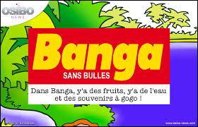 """Quel était la mascotte de la marque de boisson à l'orange """"Banga"""" ?"""