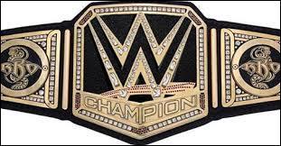 Qui est l'actuel champion de la WWE 2015-2016 ? (une victoire à Survivor Series)