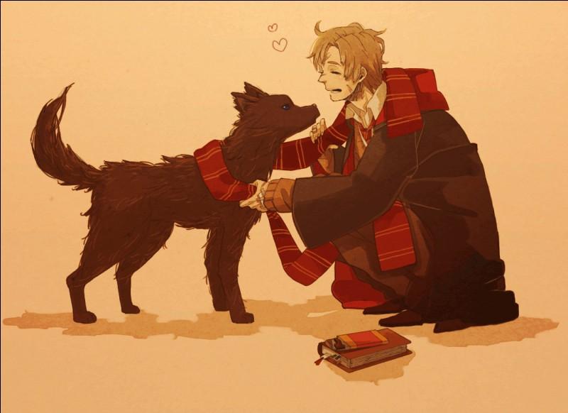 Lupin se transforme trois fois par mois en loup-garou.