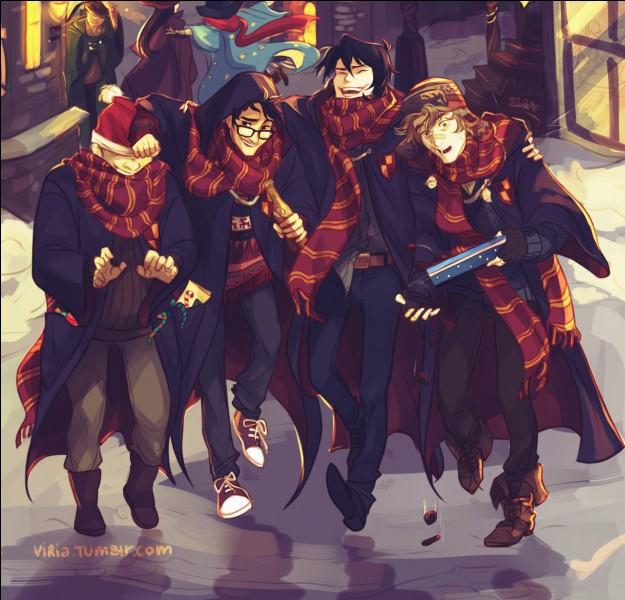 Sans compter Remus, combien d'années a-t-il fallu à James et Sirius pour devenir des Animagi ?