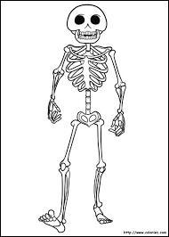 Comment s'appelle le plus petit os du corps humain ?