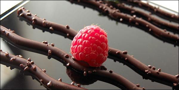 Que sont ces petits brins de chocolat aux arômes subtils ?