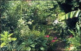 Pomone (ou Pomona) préférait les jardins...