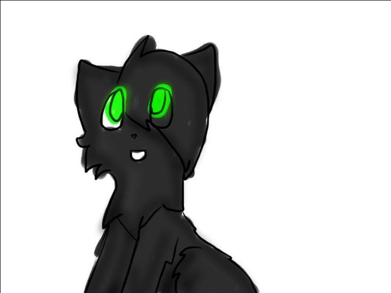 Quel était le nom de chaton de Feuille de Houx ?