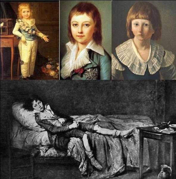Louis XVI est mort le 21 janvier 1793, il a été décapité. Bien que la République ait été proclamée, à sa mort, Louis XVI a eu un successeur.Qui, officiellement, est devenu roi ?