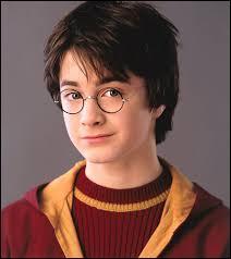 Je suis l'Élu. Mes parents sont morts, assassinés par un mage noir. Mes meilleurs amis sont Ron et Hermione, et on a vécu plein d'aventures ensemble. Qui suis-je ?