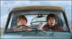 Qu'est-ce que la voiture écrase lors de leur arrivée à Poudlard ?