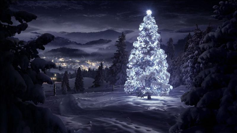 Dis-moi Synapse (encore toi ! ) si tu vas sur le forum la veille de Noël pour mettre le souk, quelle est la différence entre un sapin et toi ?