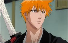 Qui Ichigo a-t-il tué, à part les Hollows de base ?
