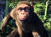 Dans le clip de quelle chanson de Coldplay peut-on voir des singes chanter et danser ?