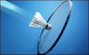 """Bienvenue au collège quizbizien ! Nous nous trouvons en sport. Envoutement a un problème, elle est coincée à cette question : """"Au badminton, sur un terrain entier, si on a 3 points, où se place-t-on pour tirer ?"""""""