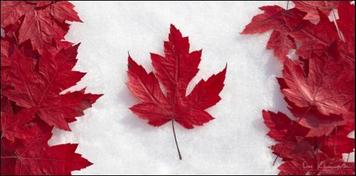 Le Canada a voulu participer à la Coupe du monde de football de 1958 en bottes.