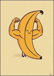 50 % de l'ADN humain est identique à celui de la banane.