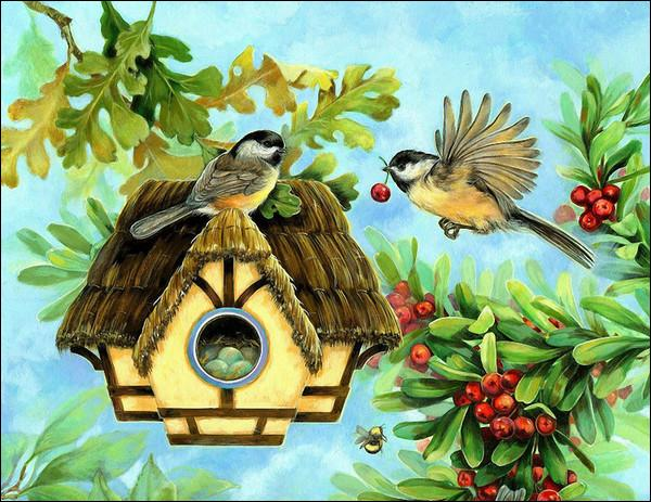 Dans quel arbre (voisin d'un autre arbre à baies rouges) ces oiseaux ont-ils élu domicile ?