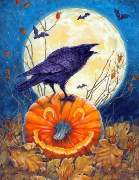 Dans quel pays la fête d'Halloween trouve-t-elle ses origines ? ?