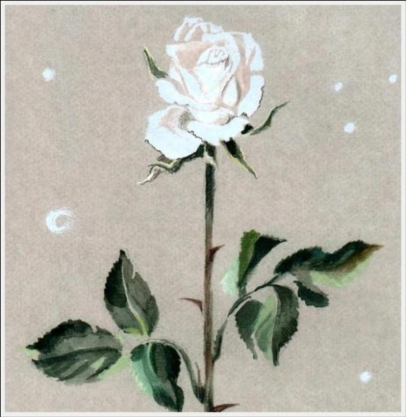 Au petit Prince qui s'inquiétait, que répondit sa rose ?