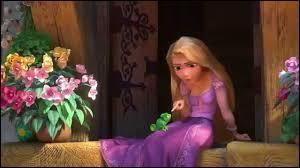 Laquelle de ces princesses du monde de Disney possède de longs cheveux ?