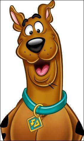 Gut gemocht Quizz Dessin animé (5) - Scooby-Doo - Quiz Dessins animes, Scooby-doo JA72