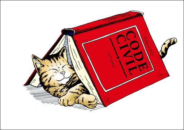 Dans le Code civil, le statut juridique des animaux a changé. Comment sont-ils qualifiés ?